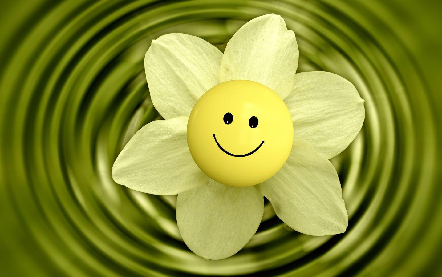 Blume mit Smile schnitt